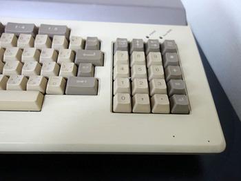DSC05055.JPG